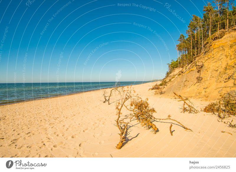 Ostseestrand in Polen Ferien & Urlaub & Reisen Strand Sand Bucht Riff Meer wild blau gelb einsam karibisch Stranddüne Wald Blauer Himmel natürlich Baltikum