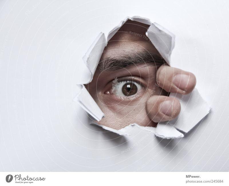 Voyeur Mensch maskulin Haut Kopf Auge Finger 1 beobachten Blick Aggression bedrohlich gruselig weiß Angst Loch Papier aufreißen Augenbraue Voyeurismus Monster