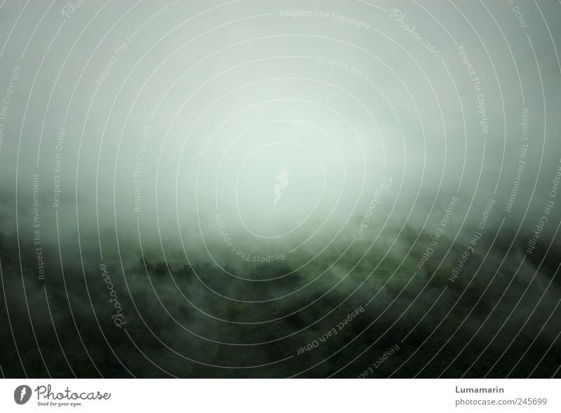 building a mystery Umwelt Natur Landschaft Wolken Klima schlechtes Wetter Nebel Regen Wald Berge u. Gebirge bedrohlich dunkel einfach fantastisch groß gruselig