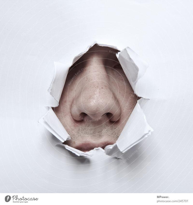 ...die nase reinstecken... Mensch maskulin Haut Kopf Nase 1 18-30 Jahre Erwachsene Geruch bedrohlich gruselig weiß Angst Loch Papier aufreißen yoyeur