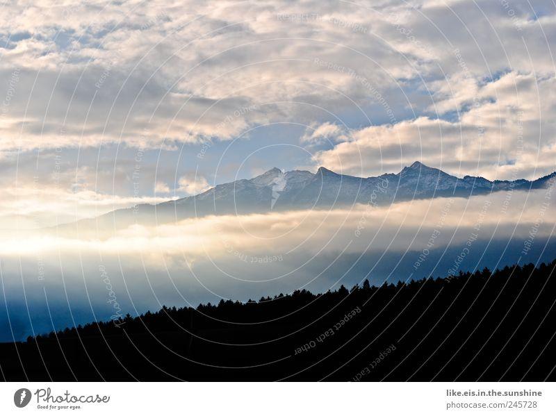guten morgen aus tirol! Umwelt Natur Landschaft Himmel Wolken Klima Wetter Schönes Wetter Nebel Baum Wald Hügel Alpen Berge u. Gebirge Gipfel