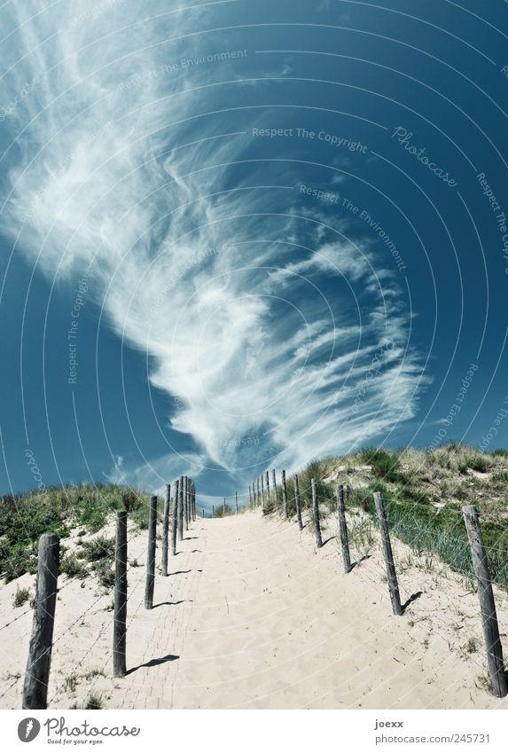 Weiter gehen Himmel Natur weiß grün blau Sommer Ferien & Urlaub & Reisen Wolken Freiheit Gras Landschaft grau Wege & Pfade Sand Luft Ausflug