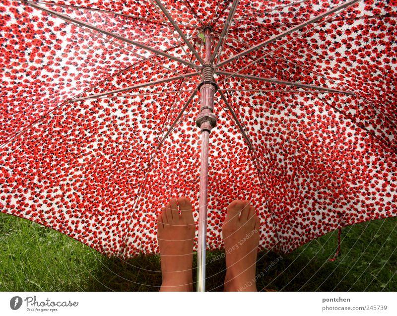 Humor. Frau hält Füße unter rot gemustertem Regenschirm Fuß Accessoire trendy Marienkäfer grün Gras Schutz Fußpilz Klimawandel Farbfoto Außenaufnahme Muster Tag