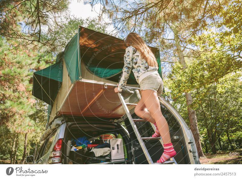 Frau Mensch Himmel Natur Ferien & Urlaub & Reisen Sommer Baum Erholung Freude Wald Berge u. Gebirge Erwachsene Lifestyle Herbst Glück Ausflug
