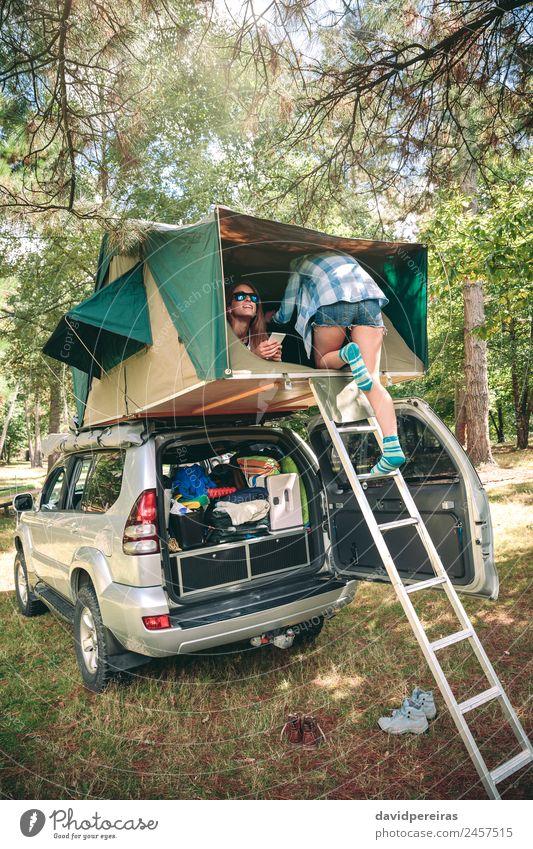 Frau Mensch Natur Ferien & Urlaub & Reisen Sommer Freude Wald Erwachsene Lifestyle sprechen Herbst Glück Ausflug Freizeit & Hobby wandern PKW