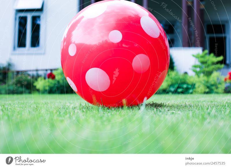 Spielwiese Sommer rot Haus Freude Lifestyle Leben Wiese Spielen Garten Freizeit & Hobby Kindheit Fröhlichkeit Schönes Wetter Punkt Ball sommerlich