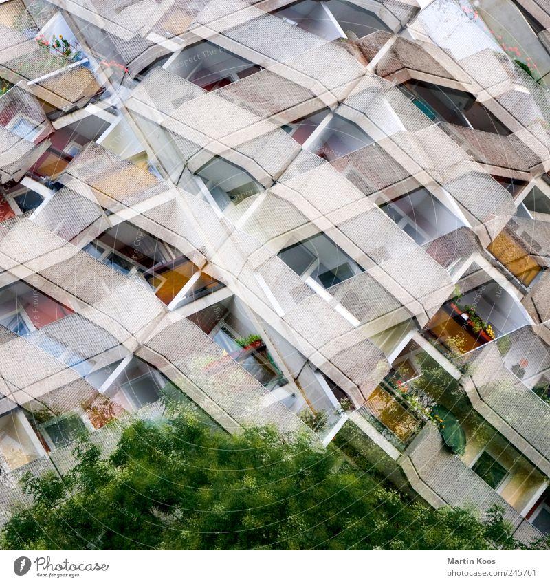 muster-apartments Baum Haus Hochhaus Gebäude Architektur Plattenbau Fassade Balkon Fenster Beton Ornament Stadt mehrfarbig grau Farbfoto Außenaufnahme