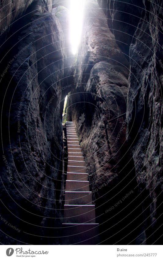 No Way Out Berge u. Gebirge wandern Natur Urelemente Sonnenlicht Hügel Felsen Sächsische Schweiz Menschenleer Mauer Wand Treppe Blick eckig Unendlichkeit hoch