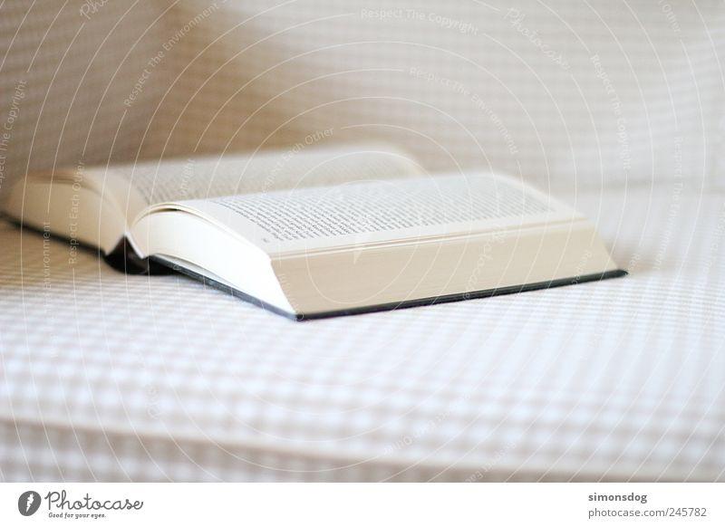 lies mal wieder! Erholung Freizeit & Hobby Buch lernen Schriftzeichen Buchstaben Bildung Sofa Medien Möbel Spannung Wissen Sessel Printmedien Text Bibliothek