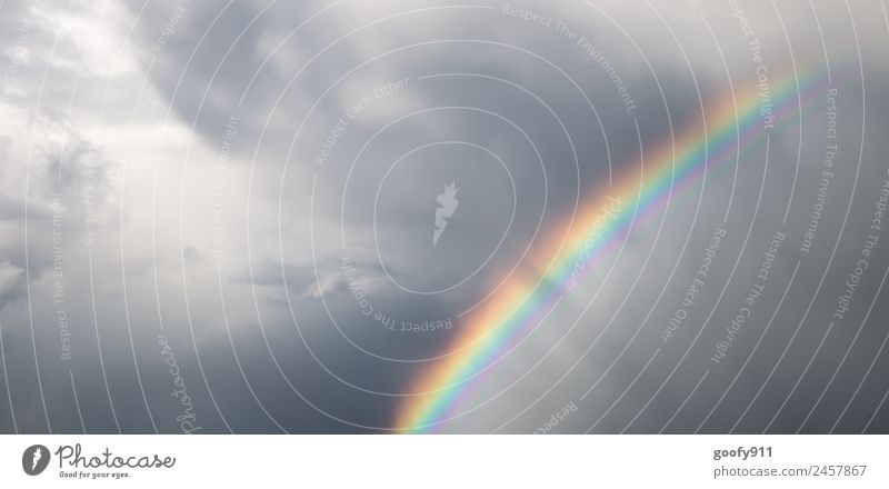 Nach dem Unwetter II Umwelt Natur Himmel Wolken Gewitterwolken Sonnenlicht schlechtes Wetter Regen glänzend elegant Ewigkeit Horizont Klima Farbfoto mehrfarbig