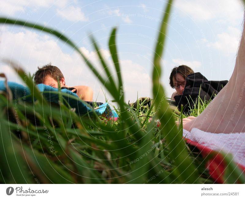 Liegewiese Natur Himmel Erholung Wiese Gras Menschengruppe Freizeit & Hobby