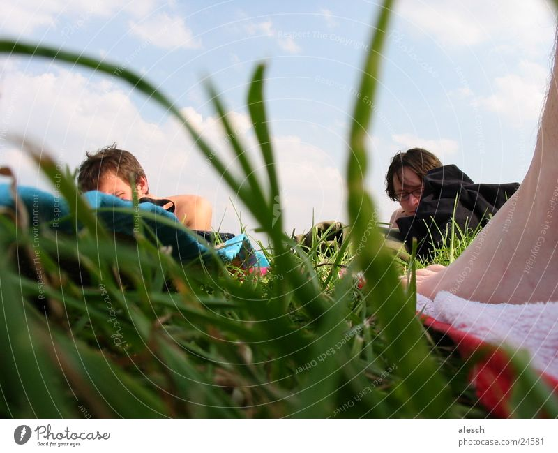 Liegewiese Wiese Freizeit & Hobby Gras Menschengruppe Natur Erholung Himmel
