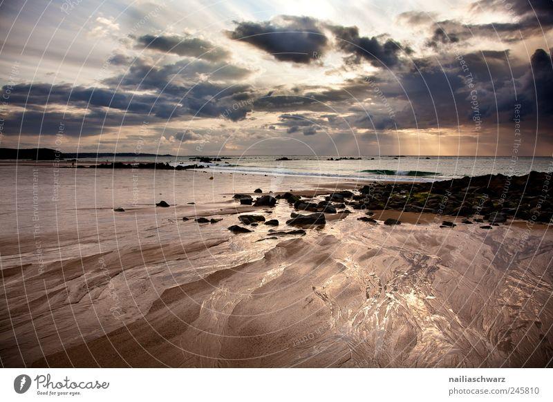Abend am Meer Himmel Natur Wasser Sommer Ferien & Urlaub & Reisen Strand Wolken gelb Umwelt Landschaft Küste braun Wellen Horizont gold