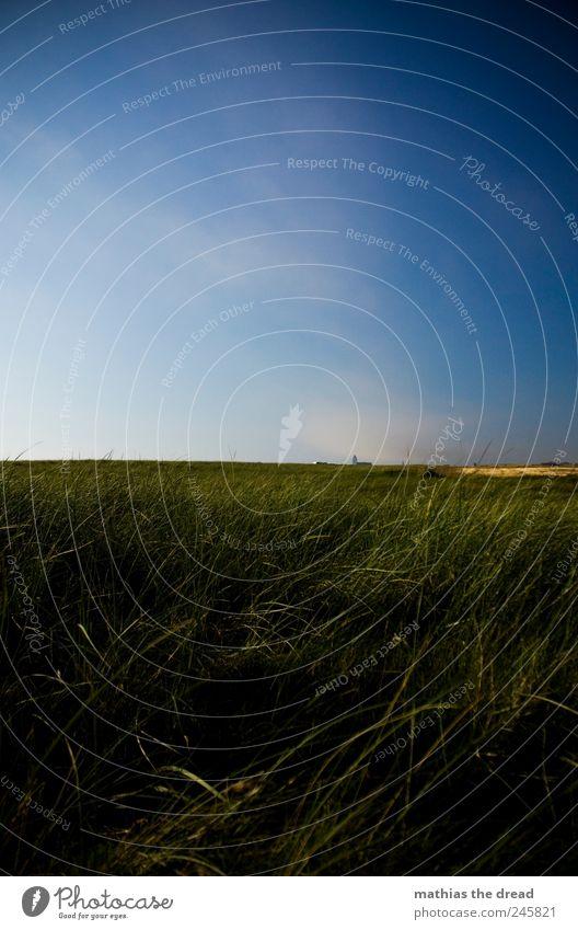 DÄNEMARK - VIII Himmel Natur grün schön Pflanze Sommer Wolken Haus Ferne Erholung Wiese Freiheit Gras Landschaft Umwelt Luft
