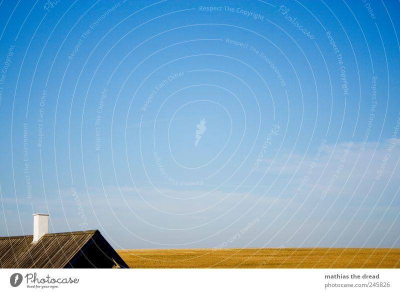 DÄNEMARK - X Umwelt Natur Landschaft Pflanze Himmel Wolken Horizont Sommer Schönes Wetter Feld Menschenleer Haus Dach schön Farbfoto mehrfarbig Außenaufnahme