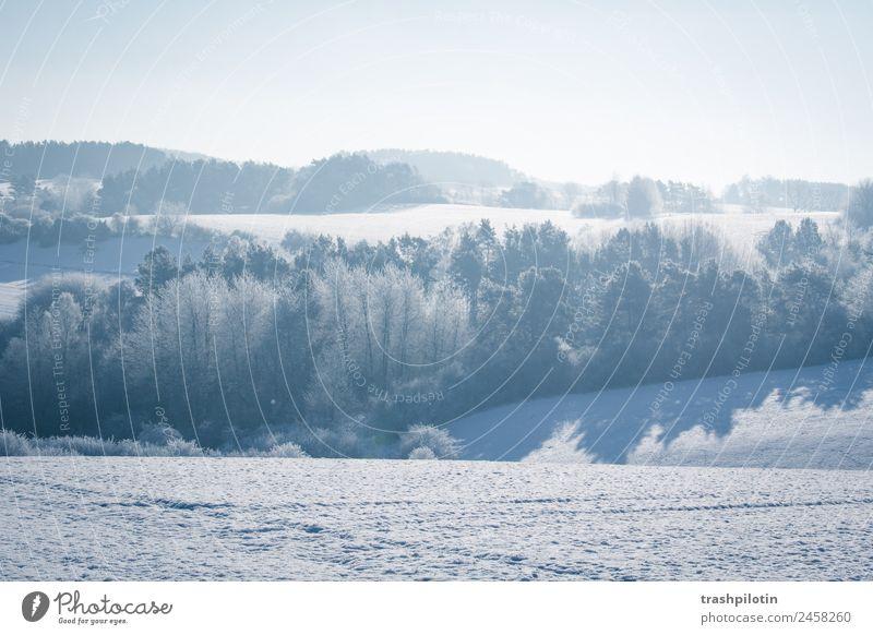 Schneelandschaft Landschaft Sonne Baum Winter kalt Schneefall Eis Feld Frost Minusgrade