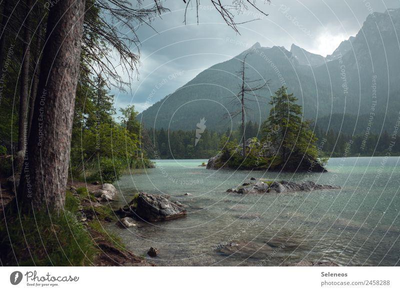 Regenguss Ferien & Urlaub & Reisen Tourismus Ausflug Ferne Freiheit Umwelt Natur Landschaft Wasser Wassertropfen Wolken Baum Alpen Berge u. Gebirge Küste