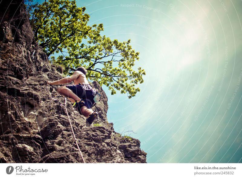 perfect sunday Mensch Mann Natur Pflanze Sommer Erwachsene Ferne Leben Freiheit Berge u. Gebirge Kraft Freizeit & Hobby Felsen hoch maskulin Seil