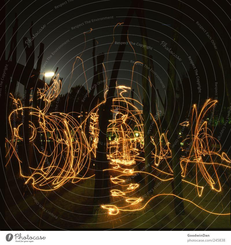 was für eine Nacht Natur dunkel kalt Umwelt Bewegung wild trist authentisch frei frisch verrückt viele Stadtzentrum Altstadt Spielplatz Strukturen & Formen