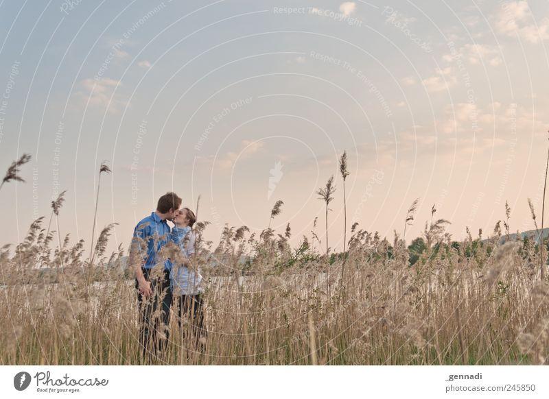 Es ist vollbracht Mensch maskulin Frau Erwachsene Paar Partner Leben 2 Umwelt Landschaft Himmel Wolken Schönes Wetter Pflanze Küssen Gefühle Glück Lebensfreude
