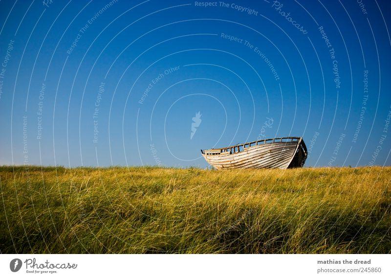 DÄNEMARK - XII schön Sommer Umwelt Natur Landschaft Pflanze Luft Himmel Wolken Horizont Schönes Wetter Wind Gras Moos Wiese Bootsfahrt Fischerboot alt liegen