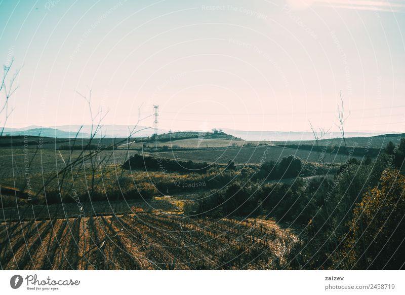 Natur Ferien & Urlaub & Reisen blau Pflanze Farbe grün Sonne Landschaft Baum Blatt Wald Berge u. Gebirge dunkel gelb Umwelt Herbst