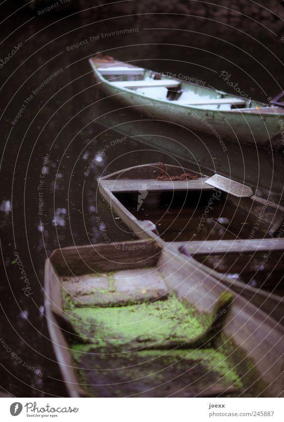 Altrhein Angeln Wasser Flussufer Ruderboot alt dreckig dunkel braun grün schwarz Fischerboot Kahn Farbfoto Gedeckte Farben Außenaufnahme Menschenleer Tag