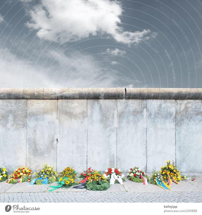 im august 1961 Blume Wand Berlin Freiheit Mauer Traurigkeit Beton Trauer Bürgersteig Vergangenheit Denkmal Grenze DDR Barriere gefangen Politik & Staat