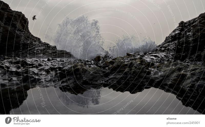 . Natur Wasser Meer Erholung Umwelt Berge u. Gebirge Landschaft Küste Erde See Wetter Wellen Vogel Wind Felsen Energie