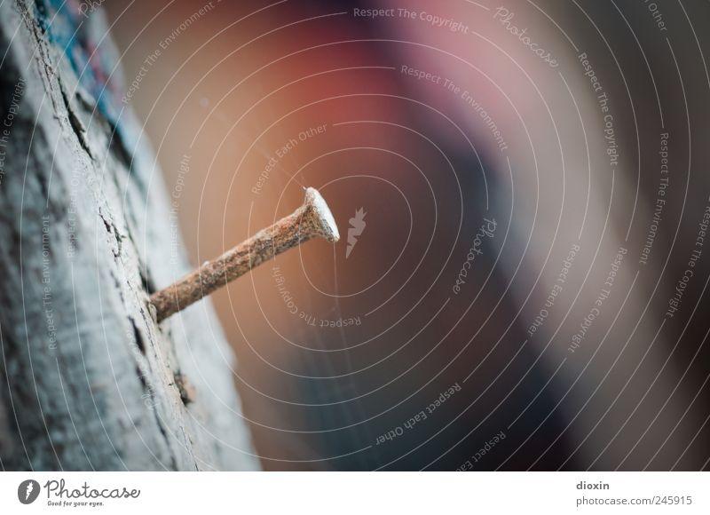 Notnagel alt Holz Metall authentisch Vergänglichkeit Verfall Vergangenheit Rost Nagel Spinnennetz verrotten Balken