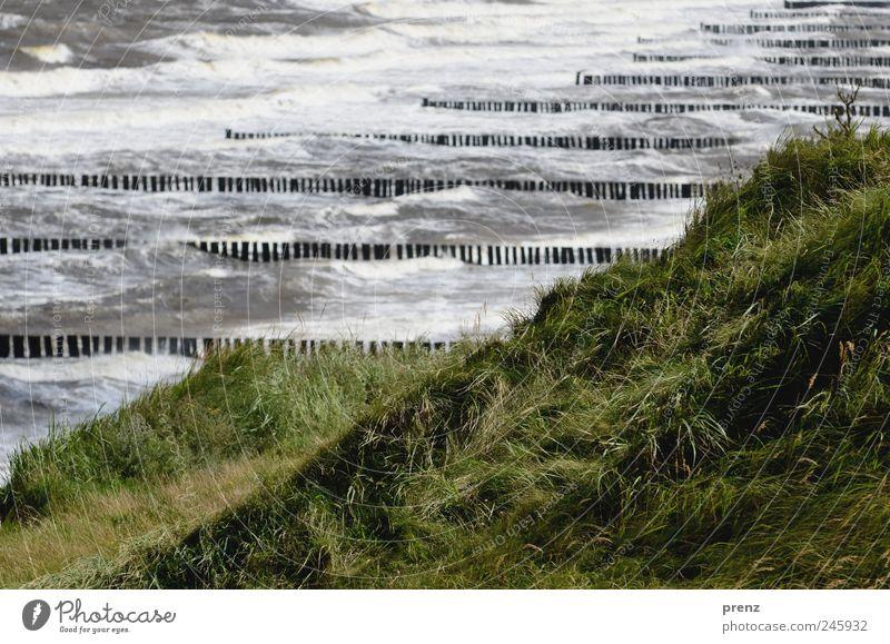 schwere see Natur Wasser grün blau Pflanze Meer Gras Landschaft Küste Wellen Wetter Klima Hügel Sturm Ostsee Darß