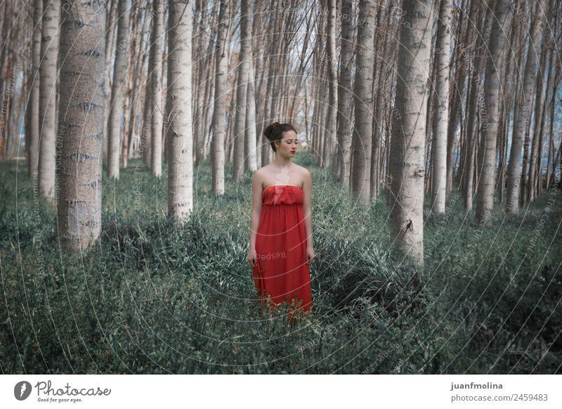 Mädchen in rotem Kleid im Wald elegant schön Frau Erwachsene Natur Landschaft Pflanze Baum Mode lang grün Gefühle Stimmung Beautyfotografie Kaukasier jung Dame