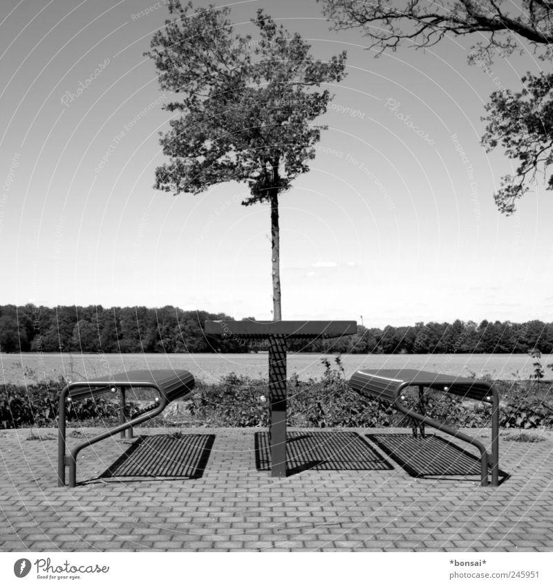rasten Ferien & Urlaub & Reisen Tisch Bank Himmel Schönes Wetter Baum Sträucher Wiese Autobahn sitzen Gastfreundschaft Reinlichkeit Sauberkeit Design Einsamkeit