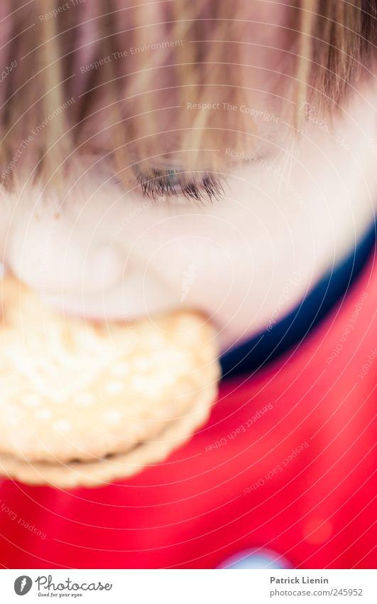 Großmaul Mensch Kind schön rot Gesicht Ernährung Lebensmittel Junge Haare & Frisuren träumen Essen Kindheit elegant Mund natürlich Fröhlichkeit