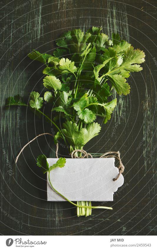 Strauß aus frischem Koriander oder Koriander, Preisschild Lebensmittel Gemüse Kräuter & Gewürze Ernährung Bioprodukte Diät Medikament Küche Pflanze Blatt Kleid