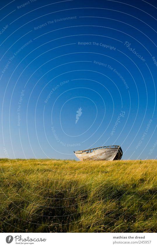 DÄNEMARK - XIII Umwelt Natur Landschaft Wolkenloser Himmel Horizont Sommer Schönes Wetter Wind Pflanze Gras Moos Wiese Schifffahrt Fischerboot alt