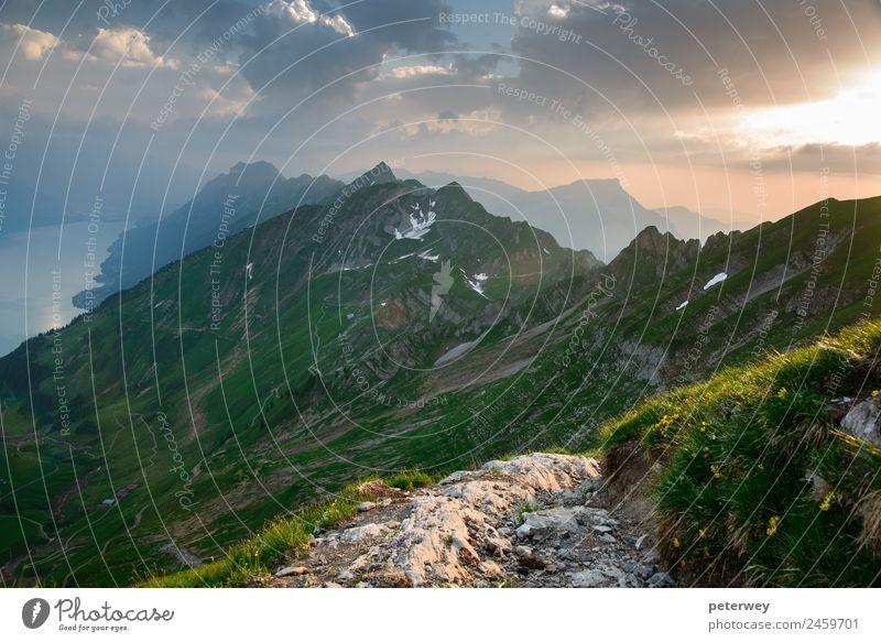 Panoramic mountain view from Brienzer Rothorn at Sunset Ausflug wandern Natur Landschaft Wolken Gras Alpen Berge u. Gebirge gelb grün Stimmung Bern above alpin