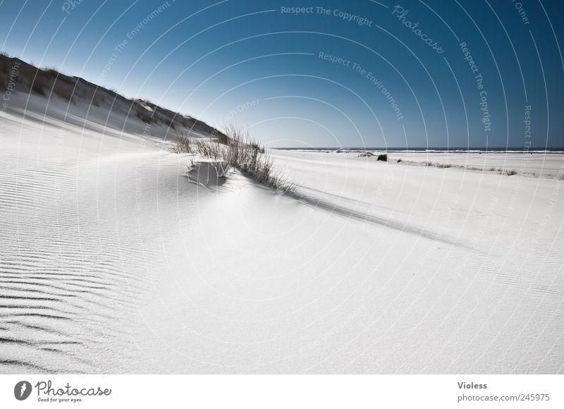 Spiekeroog   ...white silence Landschaft Sand Himmel Sonnenlicht Sommer Strand Nordsee Insel entdecken Erholung blau weiß Dünengras Stranddüne Farbfoto