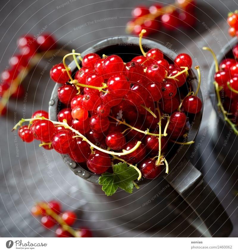 saftige rote Johannisbeeren im Becher aus Zink Obst Frucht Bioprodukte Lebensmittel Vegetarische Ernährung rund sauer grau grün gepflückt Ernte Foodfotografie