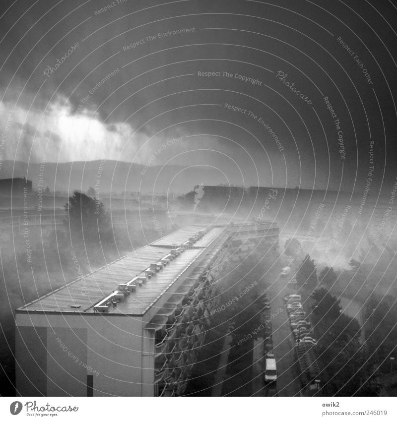 Tief im Osten Wasser Stadt Baum Haus Straße kalt dunkel Wand PKW Mauer Gebäude Regen nass Fassade Verkehr Klima