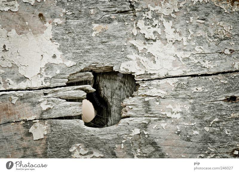 loch alt Holz grau dreckig kaputt Verfall trashig Loch Riss Öffnung