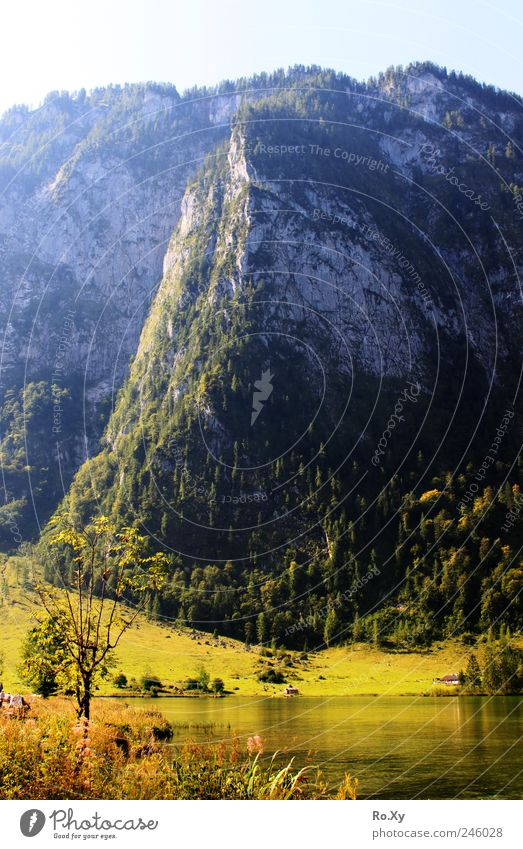 Am Ende des Königssees... Ferien & Urlaub & Reisen Tourismus Ausflug Sommer Berge u. Gebirge wandern Natur Landschaft Wasser Gipfel Seeufer Salet