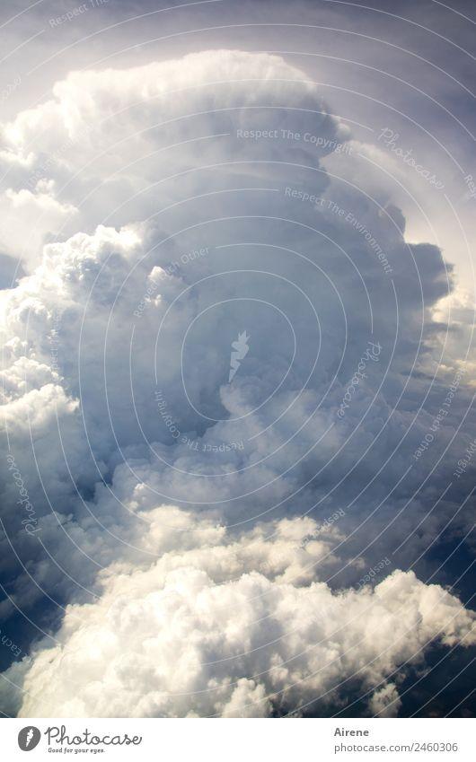 Haufen Wolken Himmel Natur blau weiß natürlich grau Wetter gefährlich groß bedrohlich viele chaotisch Respekt gigantisch Feindseligkeit