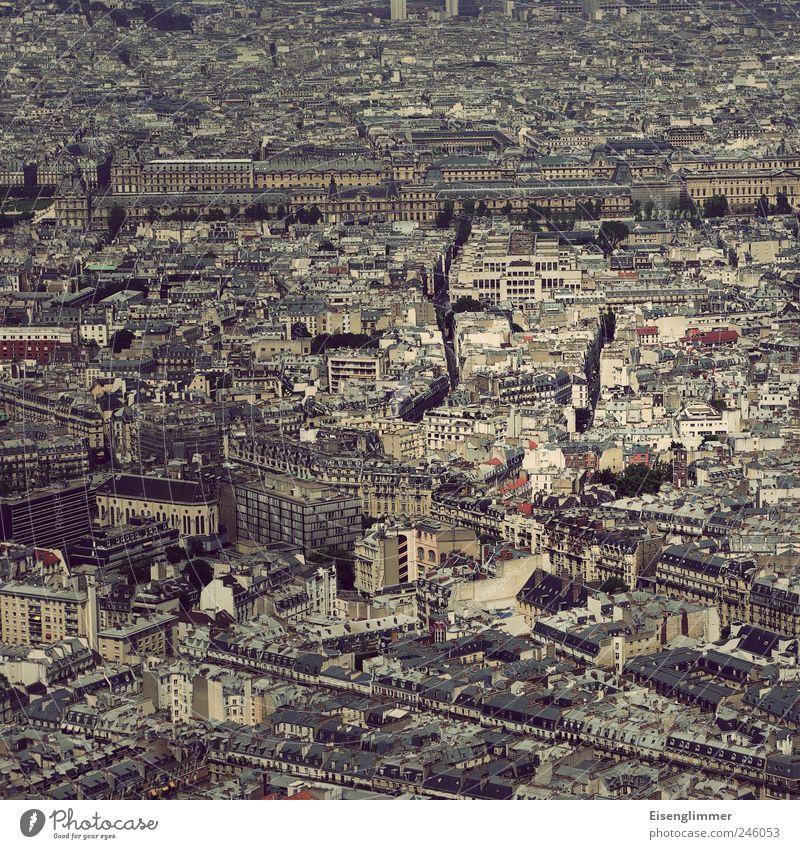 Paris im Quadrat Frankreich Europa Hauptstadt Altstadt Haus ästhetisch historisch hoch Kultur Nostalgie Luftaufnahme Farbfoto Gedeckte Farben Außenaufnahme