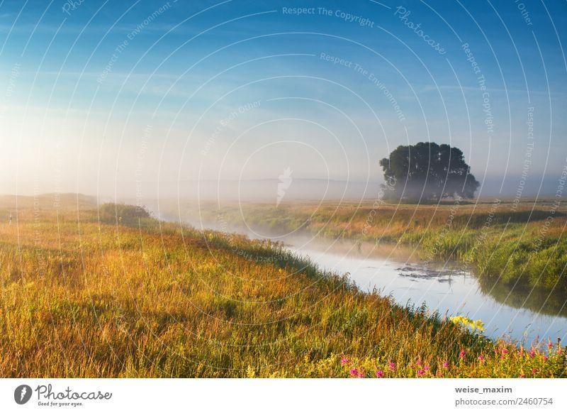 Himmel Natur Ferien & Urlaub & Reisen Sommer blau grün Sonne Landschaft Baum Wolken Herbst natürlich Wiese Gras See Park