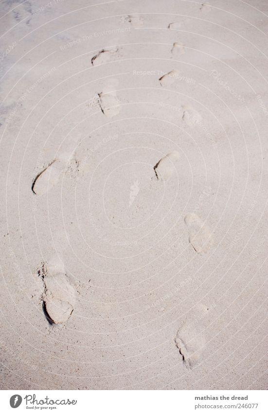 DÄNEMARK - XV Natur schön Sommer Strand Erholung Sand Paar Fuß laufen Schwimmen & Baden Spaziergang Wüste Fußspur Sonnenbad Schönes Wetter Sommerurlaub