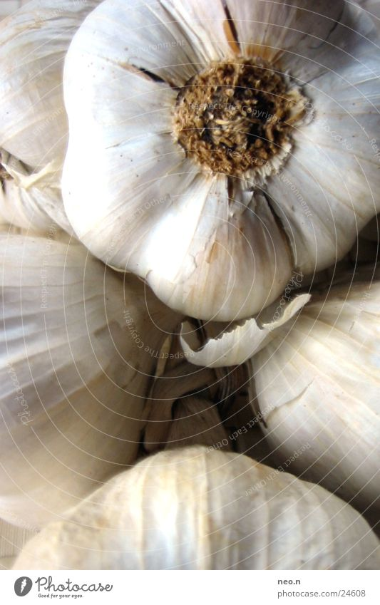 Knoblauch Gemüse Kräuter & Gewürze Ernährung Gesundheit Leben Küche Essen braun grau weiß Knolle Knoblauchknolle Würzig Lebensmittel kochen & garen