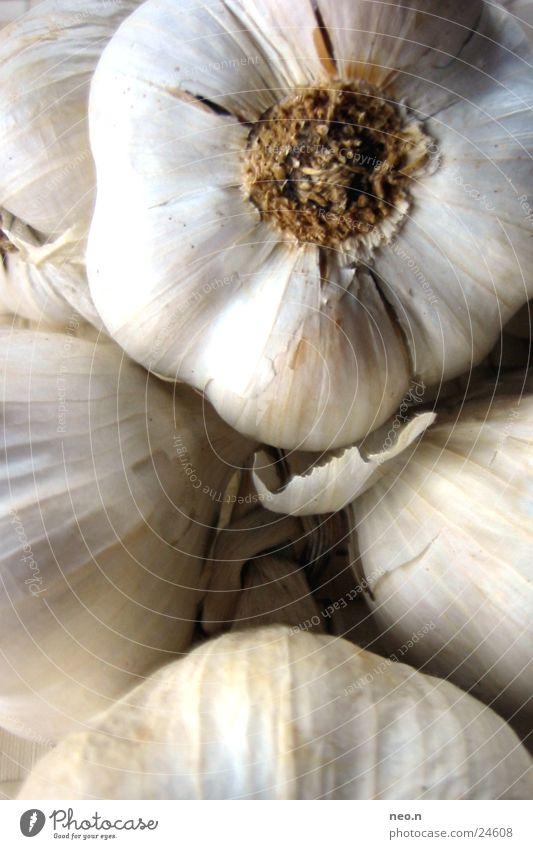 Knoblauch weiß Leben grau Essen Gesundheit braun Lebensmittel Ernährung Kochen & Garen & Backen Küche Kräuter & Gewürze Gemüse Geschmackssinn Knolle Würzig Knoblauch