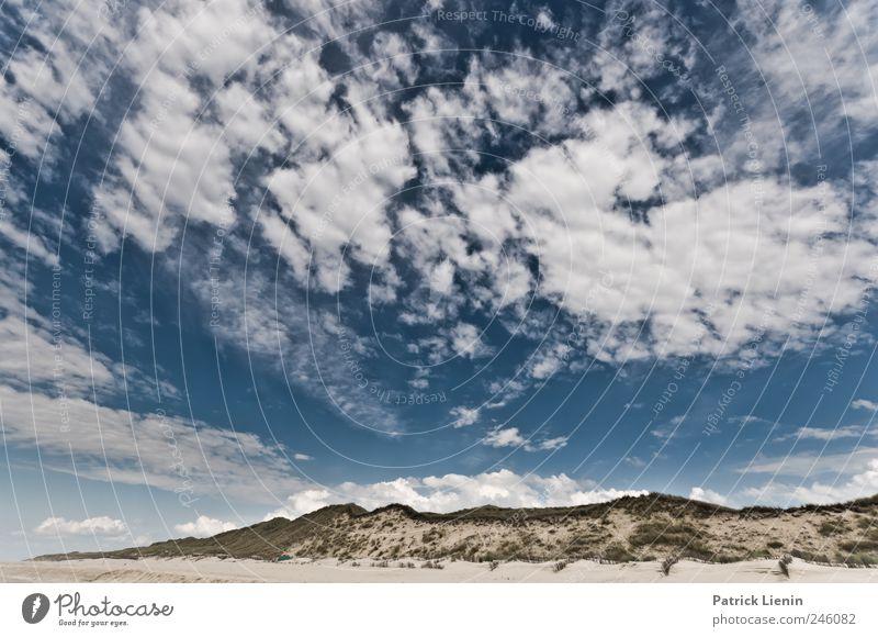 Air Himmel Natur Pflanze Sommer Ferien & Urlaub & Reisen Strand Meer Wolken Einsamkeit Freiheit Umwelt Landschaft Küste Wetter Wellen Freizeit & Hobby