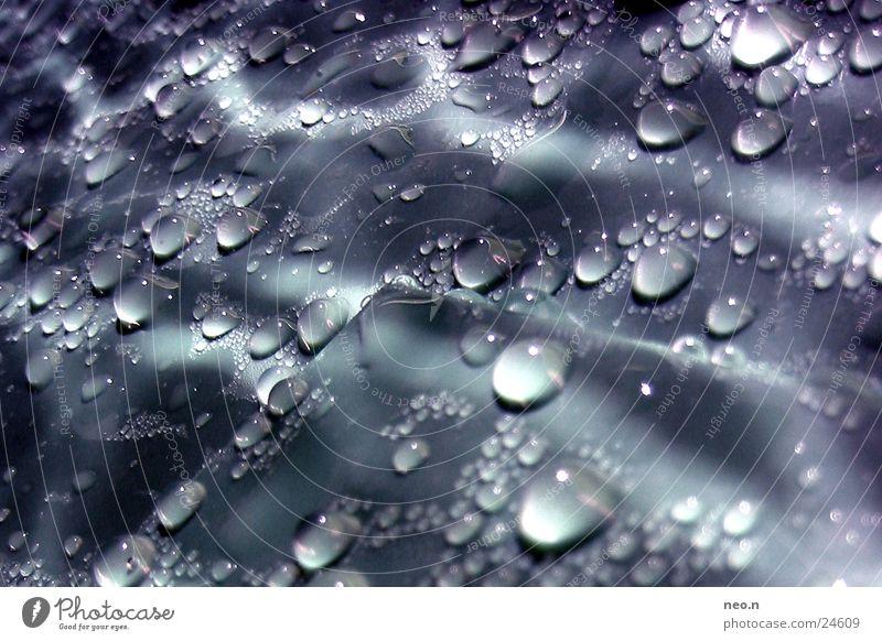 Wassertropfen Regen glänzend frisch leuchten nass Regenwasser Tropfen feucht Lichteffekt tropfend Regentonne
